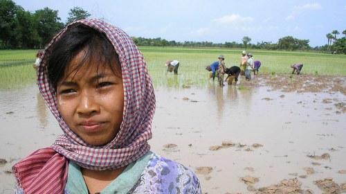 La UNESCO apoya la formación de periodistas ciudadanos en Camboya
