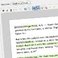 The New York Times desarrolla un plugin de WordPress para la edición colaborativa
