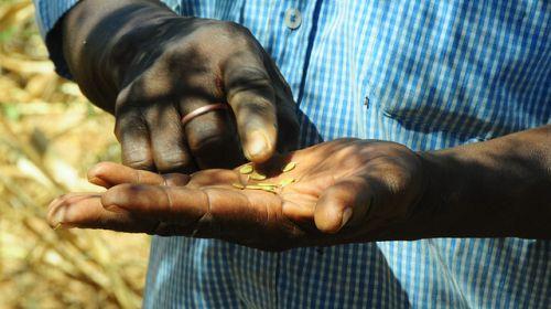 Un cambio de paradigma en la información sobre la agricultura en África