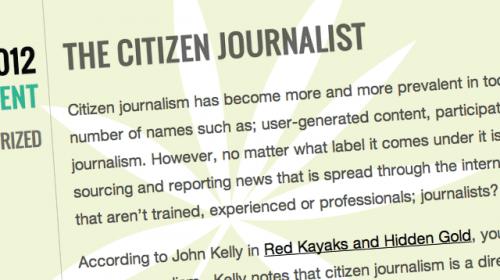El periodista ciudadano