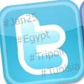 Facebook y Twitter en las revueltas del norte de África