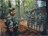 Las FARC, anuncia la posible liberación de tres nuevos rehenes tras la campaña: 'Un millón de voces contra las Farc'