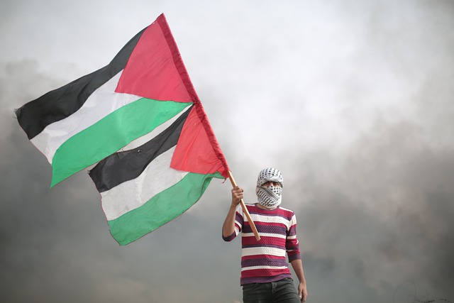 Redes sociales y contenido generado por el usuario para visibilizar la masacre contra el pueblo palestino